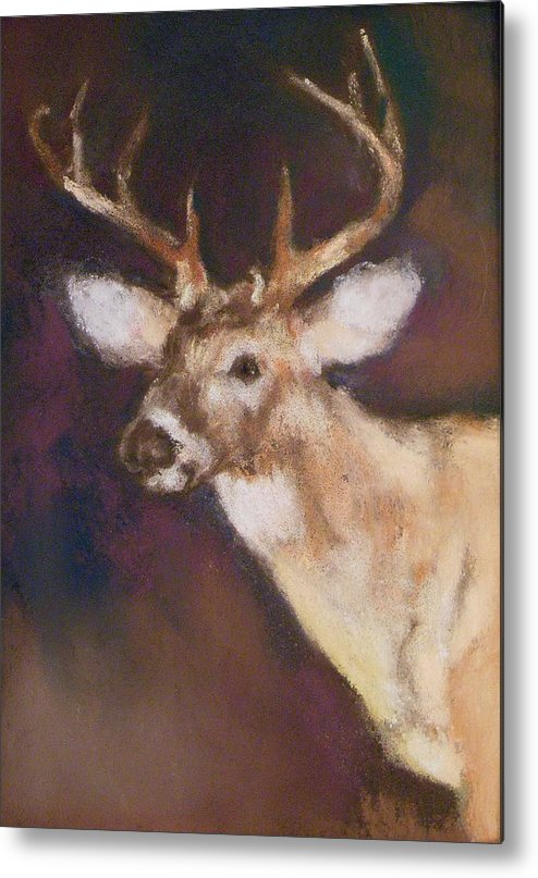 White Tail Deer Metal Print featuring the painting White Tail Buck by Debbie Anderson