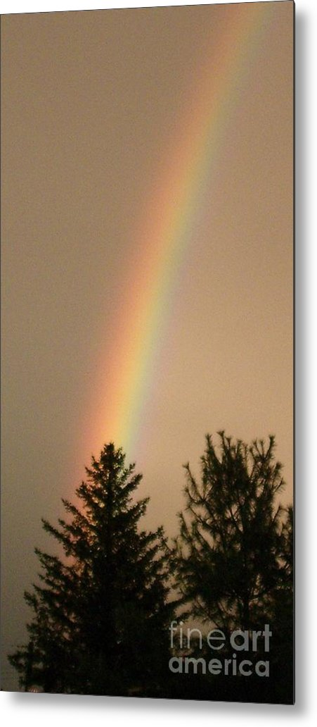 Rainbow Metal Print featuring the photograph Shooting Rainbow Silhouettes Trees by Gail Matthews