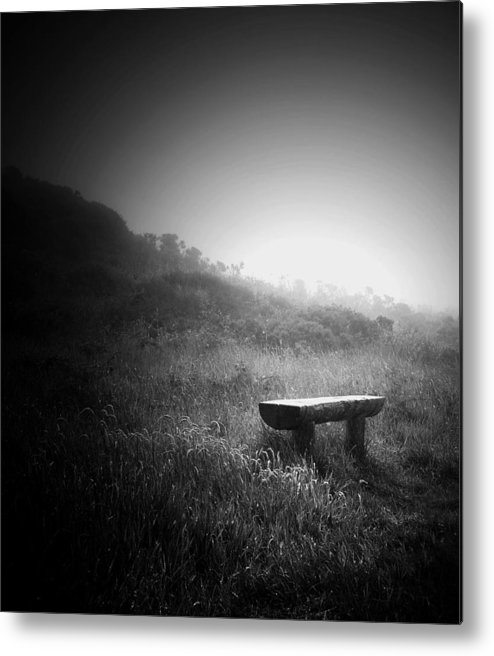 Landscape Metal Print featuring the photograph Alone by Ann Fogarty