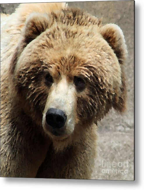Bear Metal Print featuring the photograph Bear In Pallete Knfe Filter by Eric Curtin