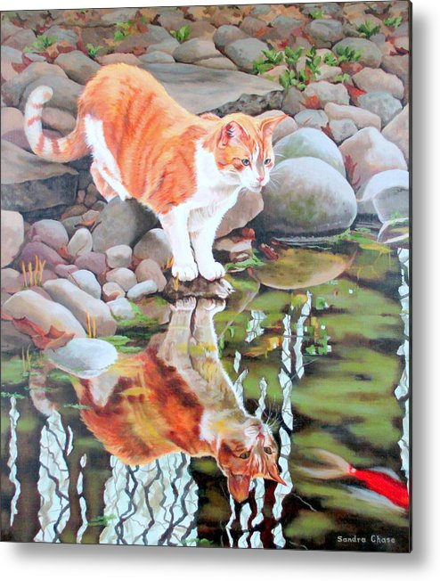 Cat Metal Print featuring the painting Reflecting by Sandra Chase
