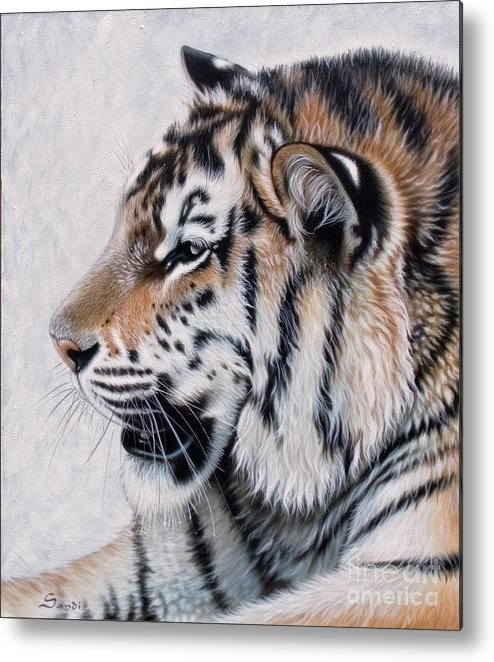Acrylic Metal Print featuring the painting Amur by Sandi Baker