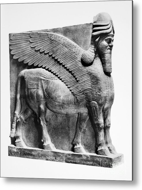 883 B.c Metal Print featuring the photograph Assyria: Bull Scultpure by Granger