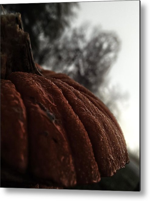Pumpkin Metal Print featuring the photograph Remains by Misty Clark