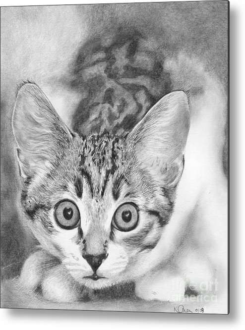 Cat Metal Print featuring the drawing Tiddles by Karen Townsend