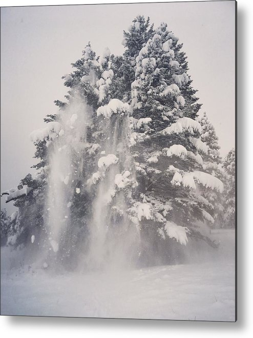 Snow Metal Print featuring the photograph Wonderland by Kelly A Wolfe
