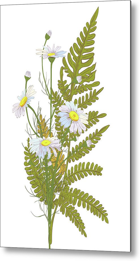 Flowerbed Metal Print featuring the digital art Set Of Chamomile Daisy Bouquets White by Olga Ivanova