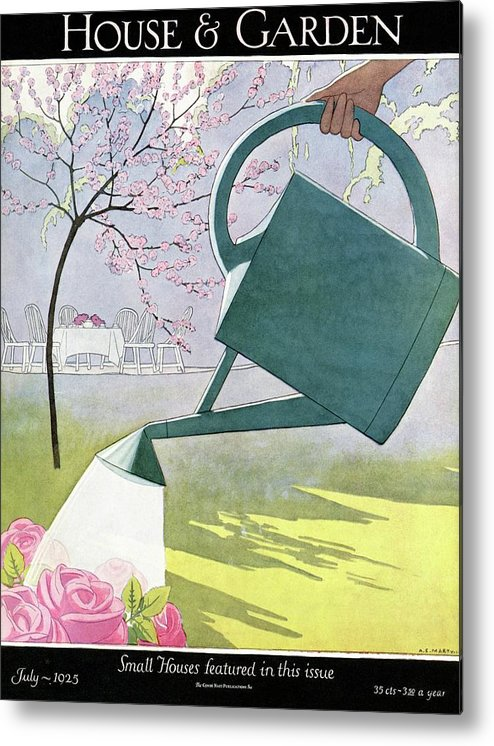 House And Garden Metal Print featuring the photograph A Watering Can Above Pink Roses by Andre E Marty