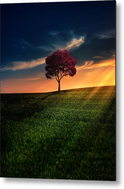 Agriculture Metal Print featuring the photograph Awesome Solitude by Bess Hamiti
