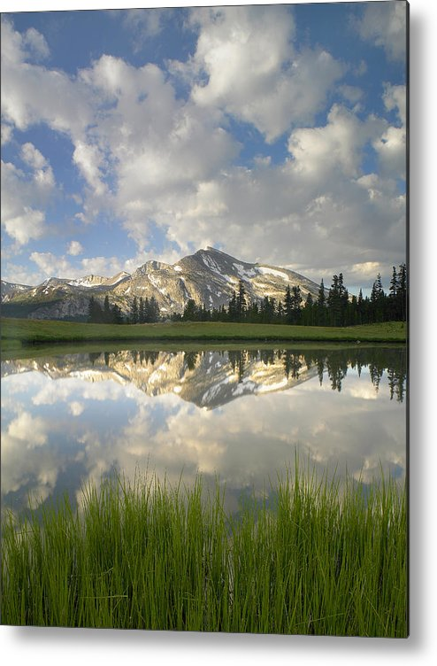 00175345 Metal Print featuring the photograph Mammoth Peak And Clouds Reflected by Tim Fitzharris