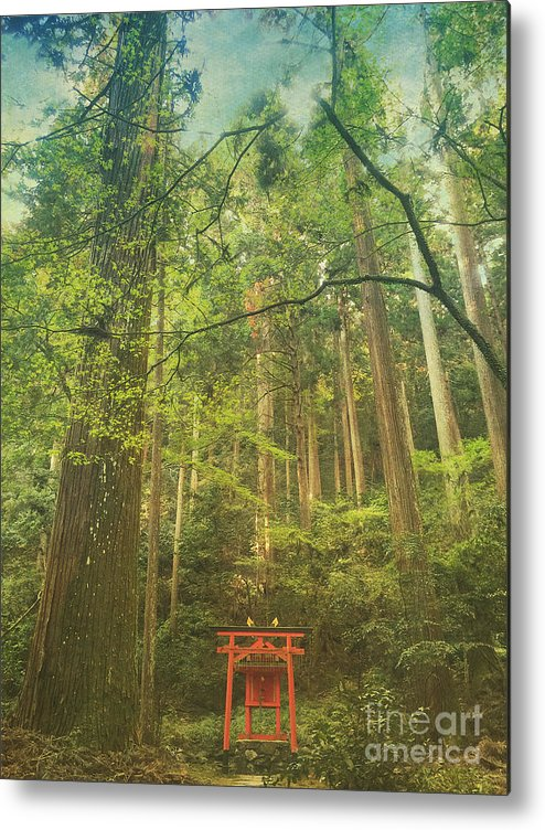 Shinto Shrine Metal Print featuring the photograph Shinto Shrine Deep In the Forest by Beverly Claire Kaiya
