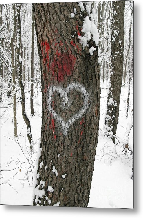 Heart Metal Print featuring the photograph Winter Woods Romance by Ann Horn