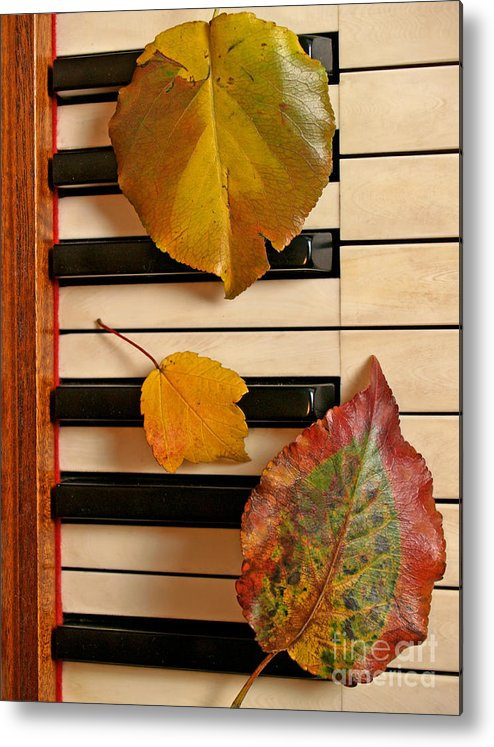 Piano Metal Print featuring the photograph Autumn Leaf Trio on Piano by Anna Lisa Yoder