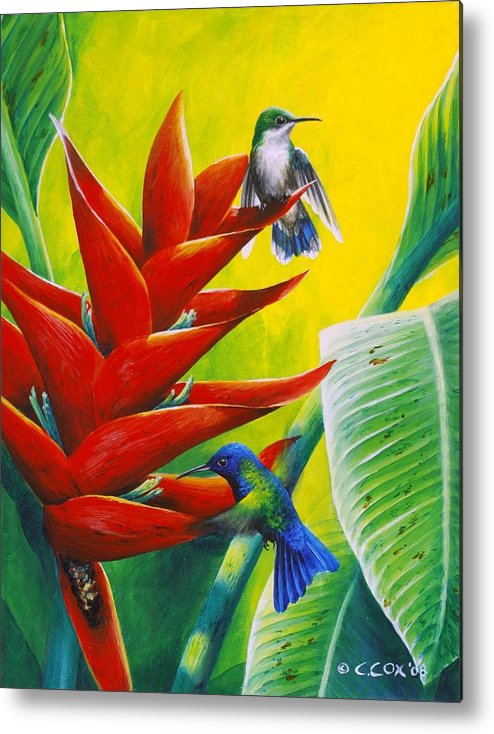 Chris Cox Metal Print featuring the painting Blue-headed Hummingbirds and heliconia by Christopher Cox
