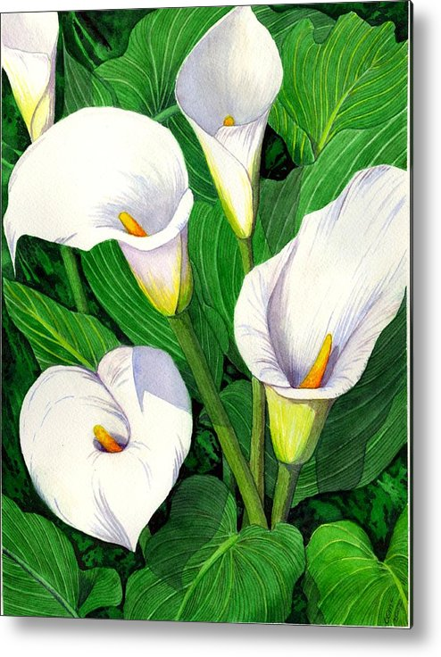 Lily Metal Print featuring the painting Calla Lilies by Catherine G McElroy