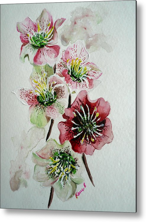 Floral Flower Pink Metal Print featuring the painting Christmas Rose by Karin Dawn Kelshall- Best