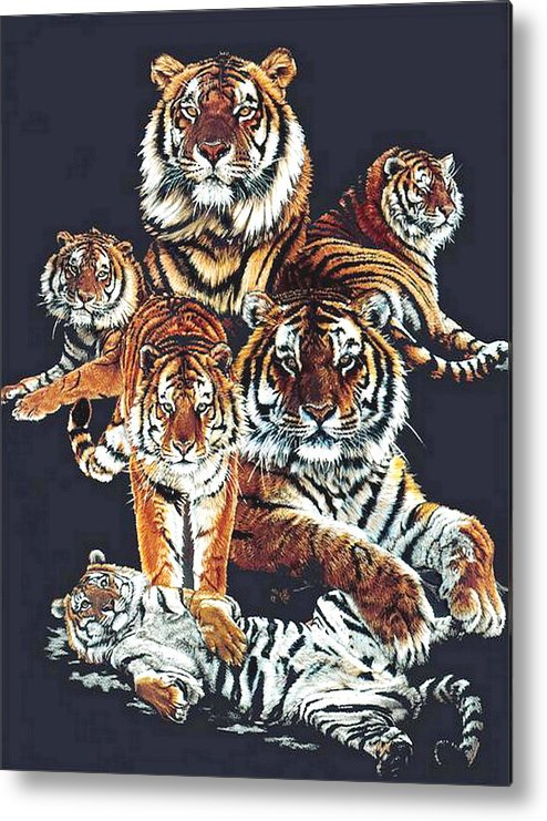 Tiger Metal Print featuring the drawing Dynasty by Barbara Keith
