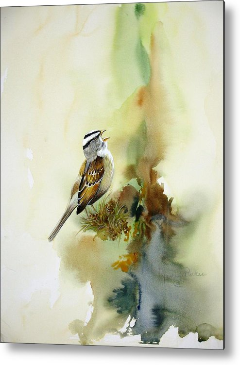 White-crowned Sparrow Metal Print featuring the painting Happy Sparrow by Lynne Parker