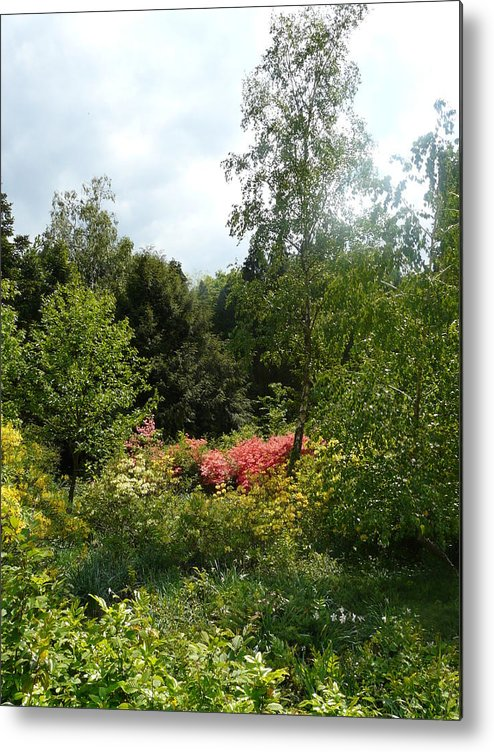 Spring Metal Print featuring the photograph In the Garden by Attila Balazs