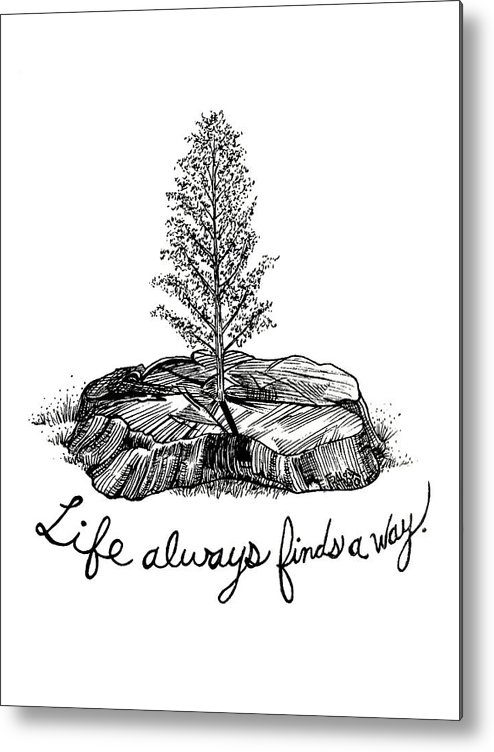 Pen And Ink Illustration Metal Print featuring the drawing LIfe Always Finds A Way by Rick Frausto
