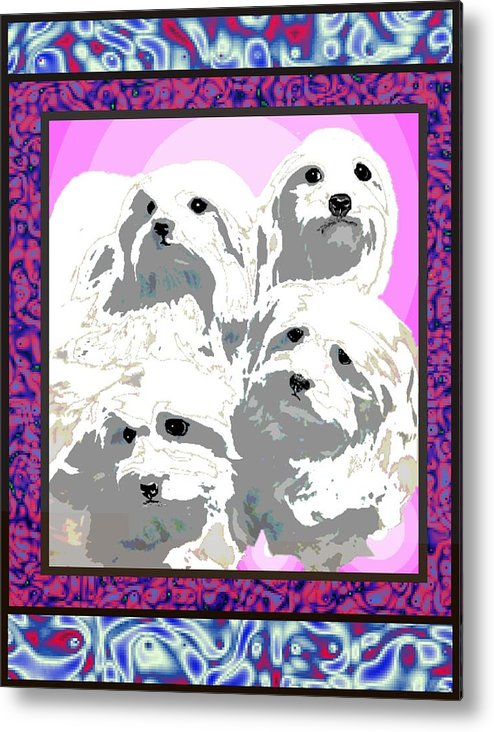 Maltese Group Metal Print featuring the digital art Maltese Group by Kathleen Sepulveda