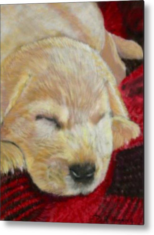 Dog. Dog Portrait Metal Print featuring the painting Mellow Yellow by David Horning