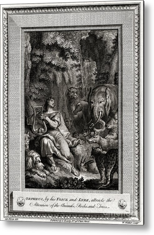 Singer Metal Print featuring the drawing Orpheus, By His Voice And Lyre by Print Collector