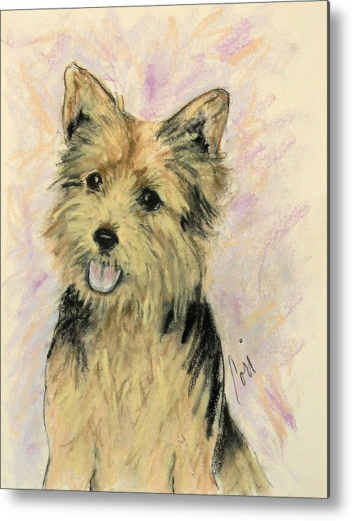 Dog Metal Print featuring the drawing Soulmate by Cori Solomon