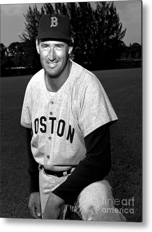 People Metal Print featuring the photograph Ted Williams by Olen Collection
