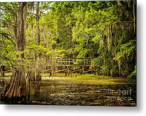 caddo Lake Metal Print featuring the photograph Lost Bridge On Caddo Lake by Tamyra Ayles