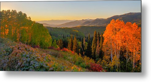 Season of Gold  by Kevin Dietrich