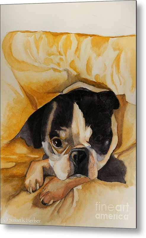 Animal Metal Print featuring the painting Harold's Bed by Susan Herber