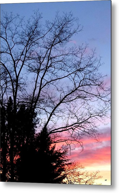 January Metal Print featuring the photograph January Silhouette by Will Borden