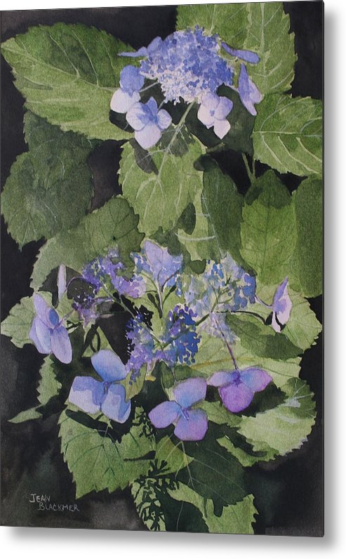 Flowers Metal Print featuring the painting Blue Lace by Jean Blackmer