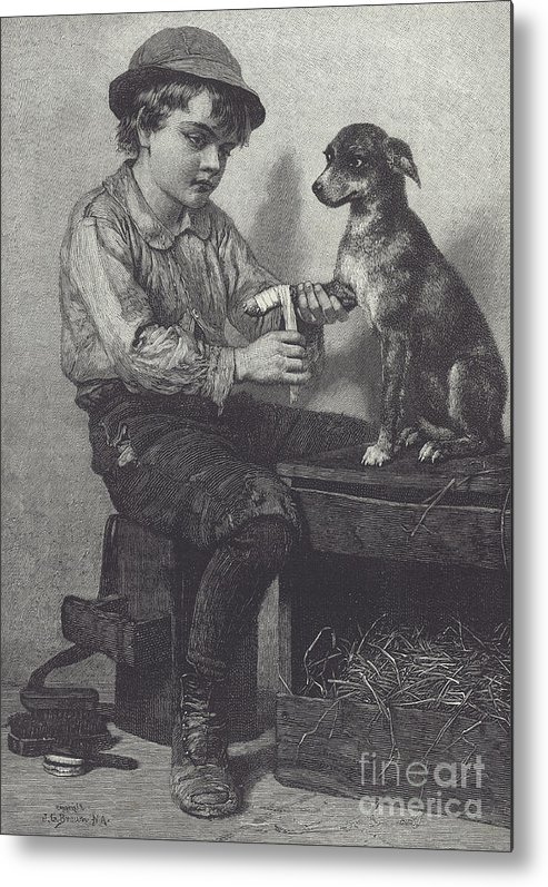 Boy Metal Print featuring the drawing Boy Mends Dog's Leg by British School