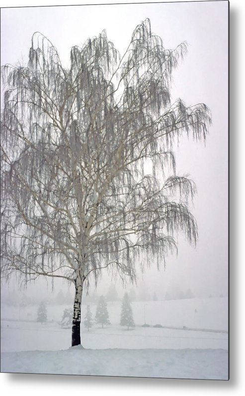 Nature Metal Print featuring the photograph Foggy Morning Landscape 11 by Steve Ohlsen
