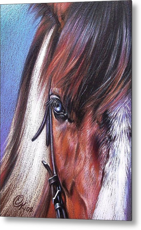 Horse Animal Portrait Drawing Art Metal Print featuring the drawing Magnificent Paint by Elena Kolotusha