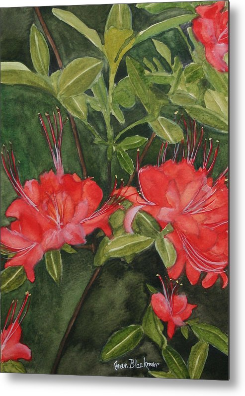 Flowers Metal Print featuring the painting Red Blooms On The Parkway by Jean Blackmer