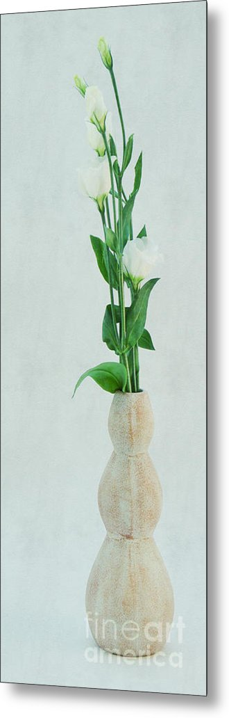 Lisianthus Metal Print featuring the photograph Elegant Lisianthus by Angela Doelling AD DESIGN Photo and PhotoArt