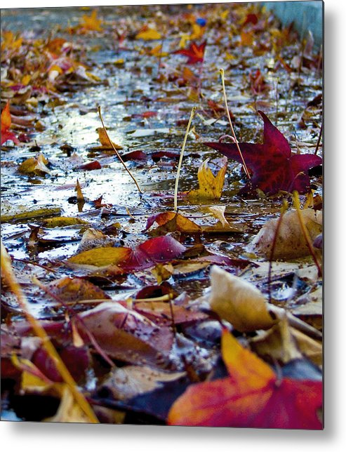 Fall Metal Print featuring the photograph Fall by Jason Leonti