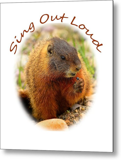 T-shirt Metal Print featuring the photograph Sing Out Loud by Greg Norrell