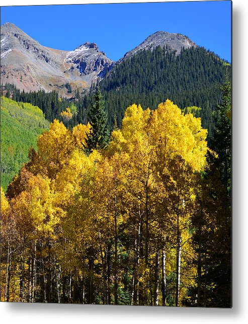 Rocky Mountains Metal Print featuring the photograph Mountain Fall Work D by David Lee Thompson