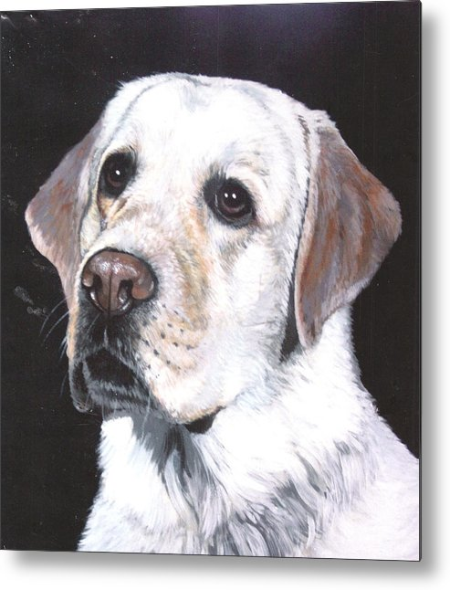 Pet Portrait Metal Print featuring the painting Retriever by Steve Greco
