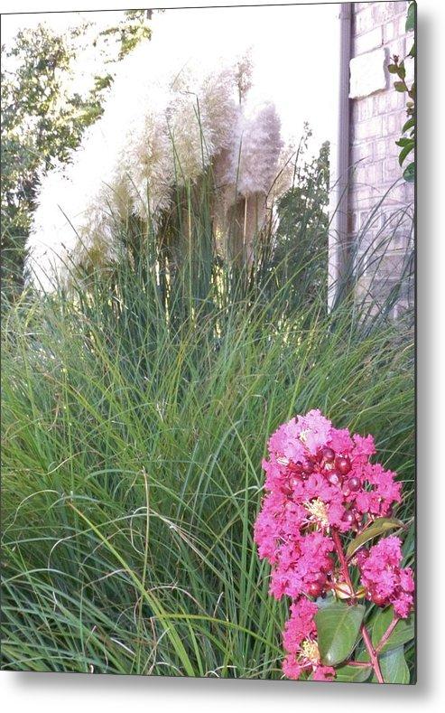 Beargrass Metal Print featuring the photograph Choctaw Flowers by Glen Finneman