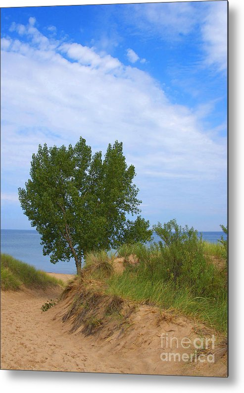 Dune Metal Print featuring the photograph Dune - Indiana Lakeshore by Ann Horn