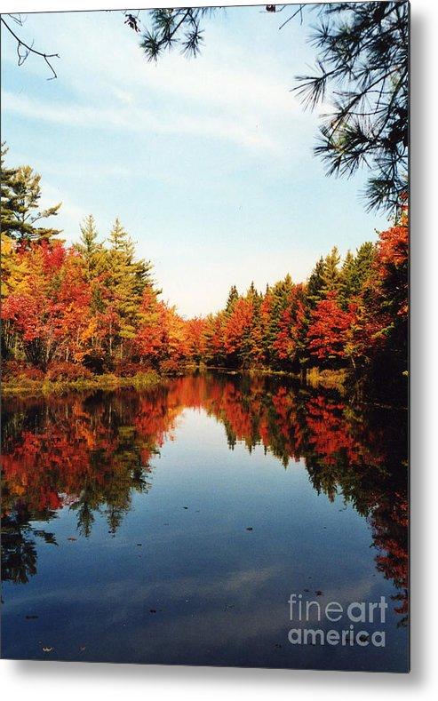 Fall Metal Print featuring the photograph Fall In New England by Rita Miller