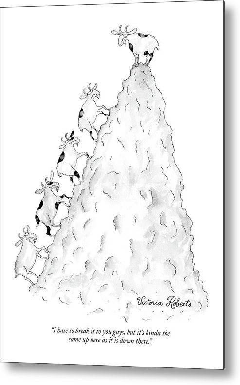 Word Play Goats Talking  (mountain Goat On Mountain Peak To Others Climbing Up.) 120136 Vro Victoria Roberts Metal Print featuring the drawing I Hate To Break It To You Guys by Victoria Roberts