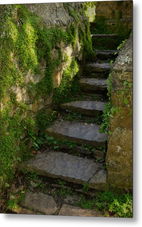 Step Metal Print featuring the photograph Mossy Steps by Carla Parris