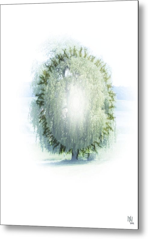 Enlightenment Metal Print featuring the digital art Enlightment Of The Willow by Nafets Nuarb
