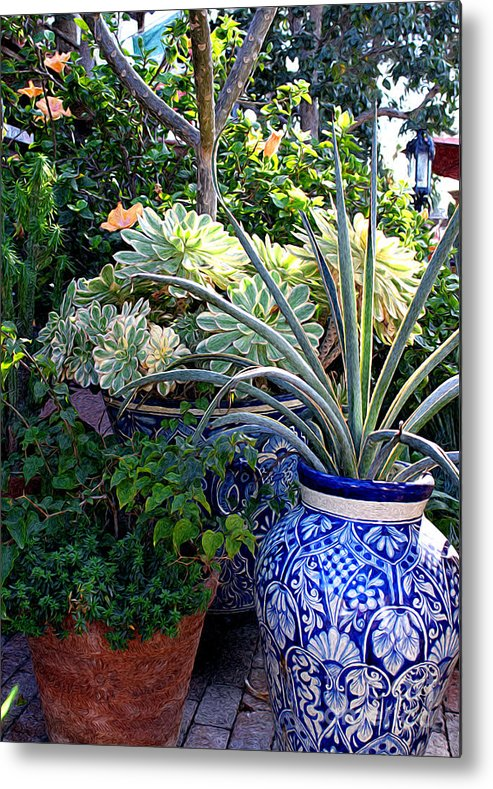 Cactus Metal Print featuring the photograph Old Town Potted Cactus by Anne Raczkowski
